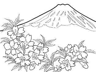 0-71-14-fuji-sakura-sen-web1.jpg