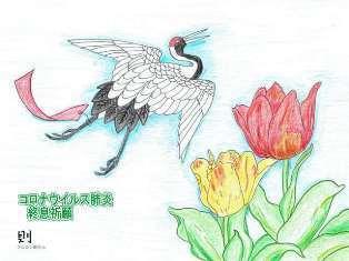 0-72-68-tulip-crain-ill-ms-web.jpg