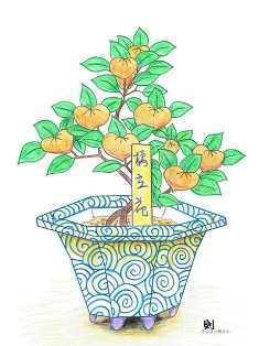 0-73-04-tachibana-bonsai-ill-ms-web.jpg