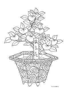 0-73-04-tachibana-bonsai-sen-web.jpg