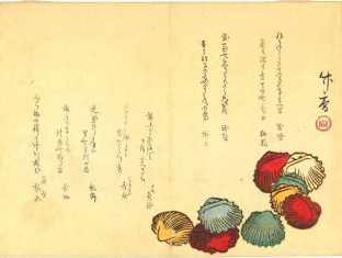 0-74-25-hiougi-shells-gazou-web.jpg