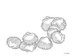 0-74-25-hiougi-shells-sen-web.jpg