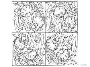 0-74-74-carnation-sen-web.jpg