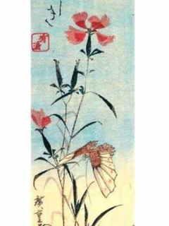 0-74-79-nadeshiko-hiroshige-gazou-bui.jpg