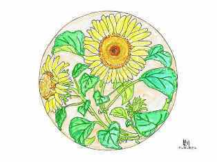 0-74-99-sunflower-zeshin-ill-ms-web.jpg