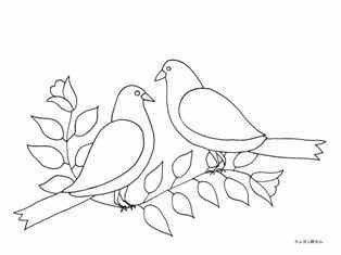 0-75-49-birds-sen-web.jpg