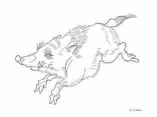 0-75-53-kouno-bairei-wild-boarl-sen-web.jpg