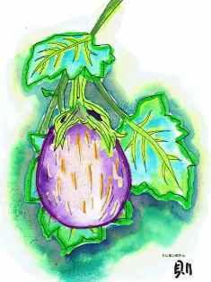 0-75-60-egg-plant-ill-ms-web.jpg