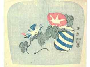 0-76-48-asagao-uchiwa-gazou-web.jpg