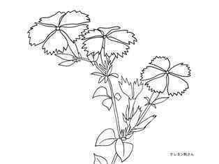 0-76-50-nadeshiko-sen-web.jpg