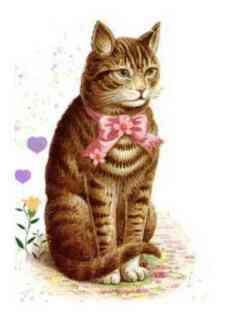 0-76-89-cat-illus-gazou-web.jpg