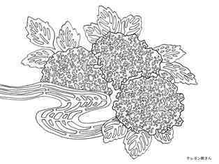 0-77-60-ajisai-kimono-sen-web.jpg
