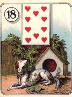 0-78-10-doghouse-gazou-web.jpg