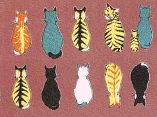 0-78-22-cats-kimono-gazou-web.jpg