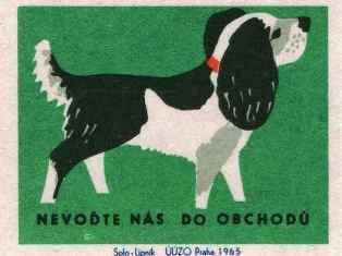 0-78-93-match-dog-gazou-web.jpg