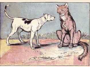0-79-17-wolf-dog-gazou-web.jpg