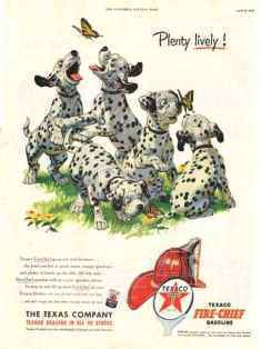 0-79-65-cho-dogs-gazou-web.jpg