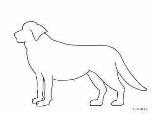 0-79-73-dog-silhouette-sen-fweb.jpg