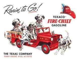 0-79-76-dogs-fireworks-gazou-web.jpg