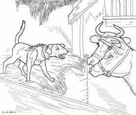0-85-53-dog-cow-sen-web.jpg