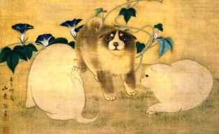0-85-56-dogs-asagao-gazou-web.jpg