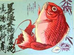 0-86-72-tai-ebi-gazou-web.jpg