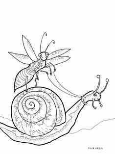 0-89-89-bee-snail-sen-web.jpg