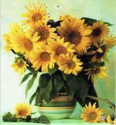0-92-35-sunflowers-gazou-web.jpg