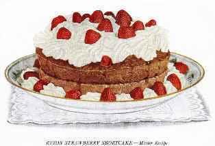 0-94-23-shortcake-gazou-web.jpg
