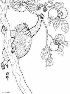 0-94-28-monkey-sen-nenga-web.jpg