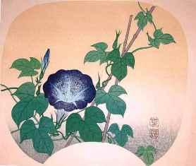 0-94-31-asagaou-chiwa-gazou-web.jpg