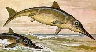 0-94-50-ichthyosaurs-gazou-web.jpg