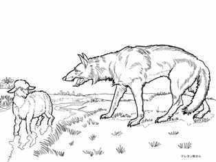 0-99-63-fox-lamb-sen-web.jpg